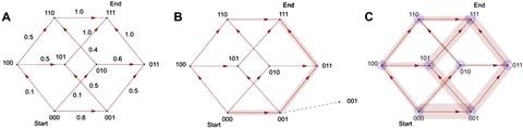 Figure 1—figure supplement 4.