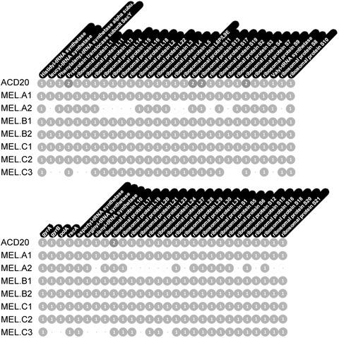 Figure 10.