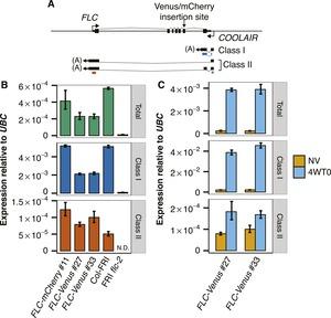Figure 2—figure supplement 2.