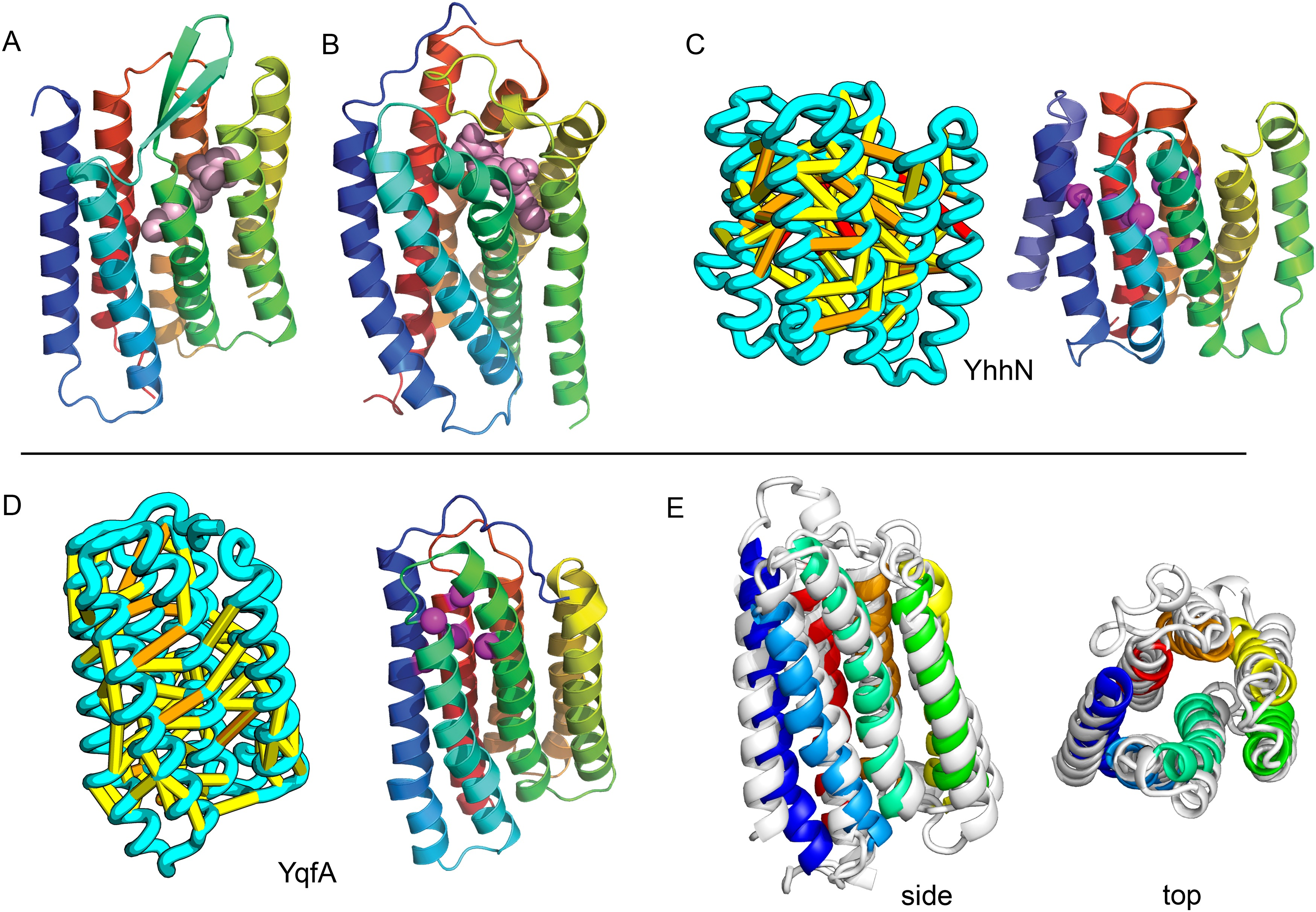 Large Scale Determination Of Previously Unsolved Protein