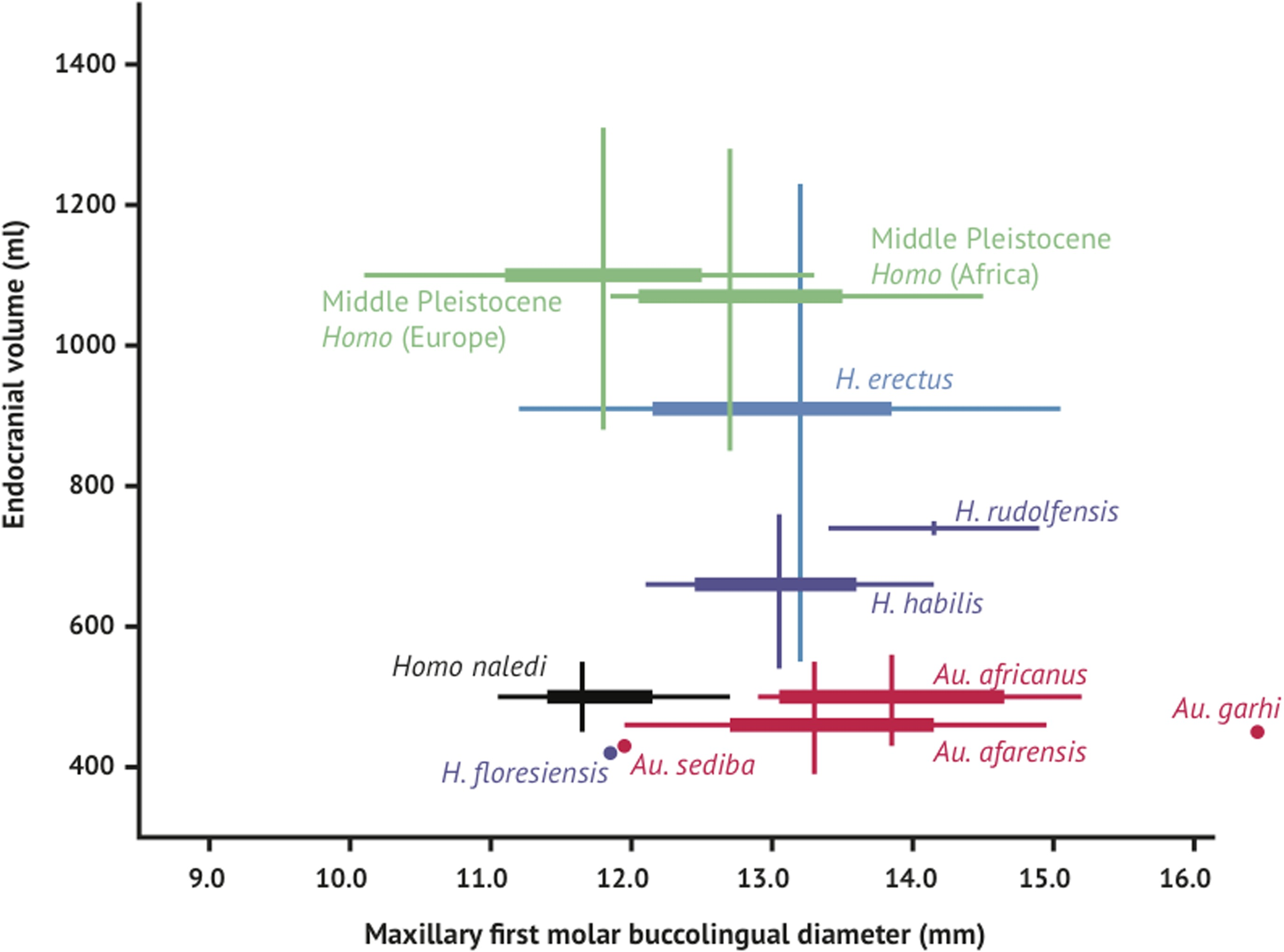dating phylogenetic trees It can be used as a method of reconstructing phylogenies but is also a framework  for testing evolutionary hypotheses without conditioning on a single tree.
