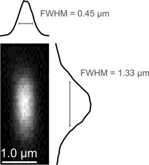 Figure 1—figure supplement1.