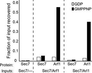 Figure 4—figure supplement 4.