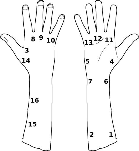 Appendix figure 1.