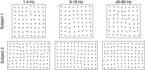Figure 1—figure supplement 10.
