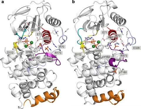 Figure 2—figure supplement 6.